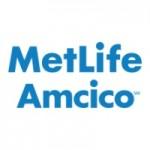 MetLife Amcico